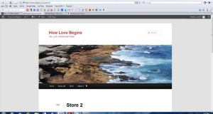 How to Embed Install an Amazon aStore on WordPress to Sell Products Online Easy With Zero Overhead